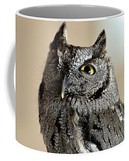 Wee Western Screech Owl Coffee Mug