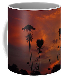 Weeds In The Sunrise Coffee Mug by Kathryn Meyer