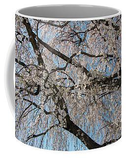 Weeping Cherry In Spring Coffee Mug
