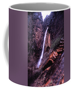 Coffee Mug featuring the photograph Weeping Rock Zion National Park by Wayne King