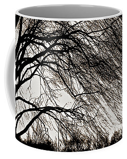 Weeping Willow Tree  Coffee Mug