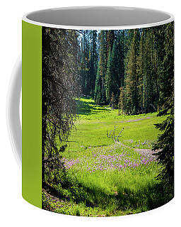 Welcom To Life- Coffee Mug