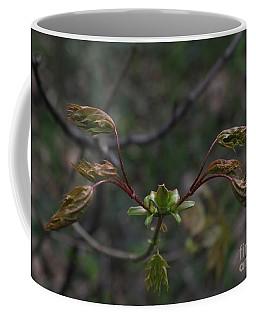 Welcome Spring Coffee Mug by Anna Yurasovsky