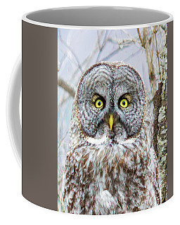Well Hello - Great Gray Owl Coffee Mug