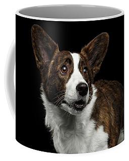 Coffee Mug featuring the photograph Welsh Corgi Cardigan  by Sergey Taran