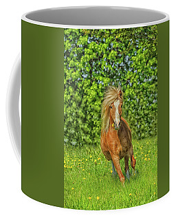 Welsh Pony Coffee Mug