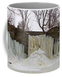 Coffee Mug featuring the photograph Wequiock Falls by Joel Witmeyer