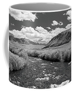 West Fork, Big Lost River Coffee Mug