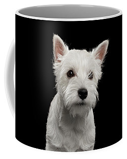 Coffee Mug featuring the photograph West Highland White Terrier by Sergey Taran