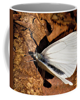 West Virginia White Coffee Mug