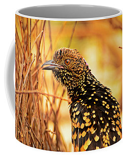 Western Bowerbird Coffee Mug