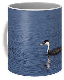 Western Grebe In Late Afternoon Light Coffee Mug