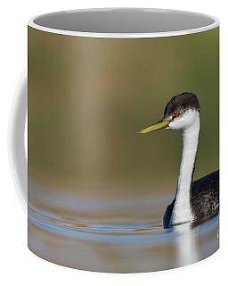 Western Grebe Posing Coffee Mug by Bryan Keil