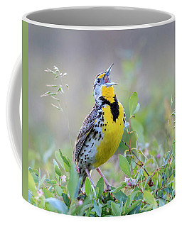 Western Meadowlark Coffee Mug