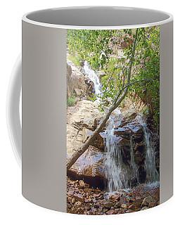 Western Side Of Etiwanda Falls Coffee Mug