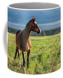 Western Stallion Coffee Mug