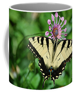 Western Tiger Swallowtail Coffee Mug