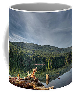 Coffee Mug featuring the photograph Westwood Lake by Randy Hall