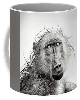 Wet Baboon Portrait Coffee Mug