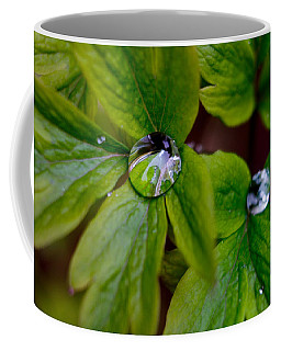 Wet Bleeding Heart Leaves Coffee Mug