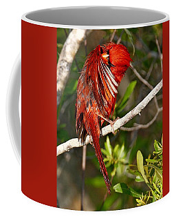 Wet Cardinal Coffee Mug