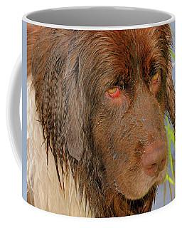 Wet Newfie Coffee Mug by Debbie Stahre