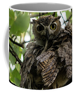 Wet Owl Coffee Mug