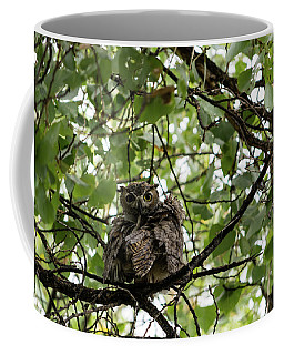Wet Owl - Wide View Coffee Mug