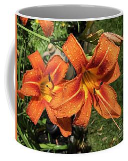 Wet Tiger Llilies Coffee Mug