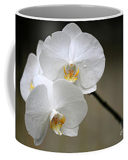 Wet White Orchids Coffee Mug