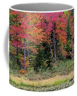 Coffee Mug featuring the photograph Wetland Fall Foliage by Alan L Graham