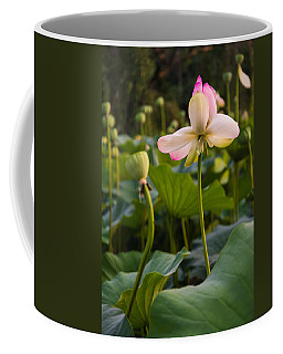 Wetland Flowers Coffee Mug