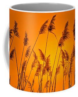 Wetland Sunset Coffee Mug