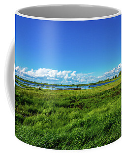 Wetlands On A Windy Spring Day Coffee Mug