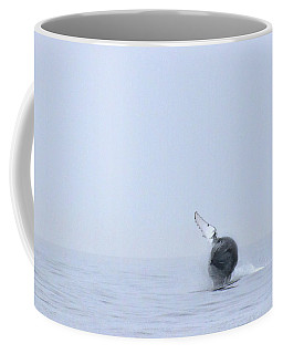 Coffee Mug featuring the photograph Whale by Aubry Harden