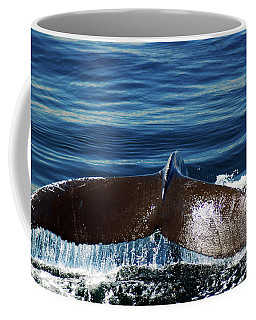Whale Of A Tail Coffee Mug by James Kirkikis