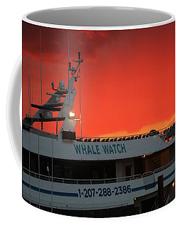 Whale Watch Coffee Mug by Living Color Photography Lorraine Lynch