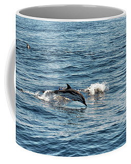 Coffee Mug featuring the photograph Whale Watching And Dolphins 1 by Enrico Pelos