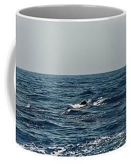 Coffee Mug featuring the photograph Whale Watching And Dolphins 3 by Enrico Pelos