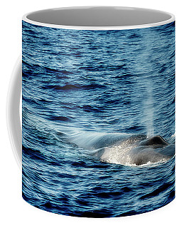 Coffee Mug featuring the photograph Whale Watching Balenottera Comune 1 by Enrico Pelos