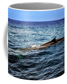 Coffee Mug featuring the photograph Whale Watching Balenottera Comune 4 by Enrico Pelos