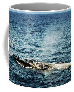 Coffee Mug featuring the photograph Whale Watching Balenottera Comune 5 by Enrico Pelos