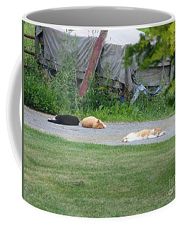 What A Day Coffee Mug