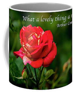 What A Lovely Thing A Rose Is Coffee Mug