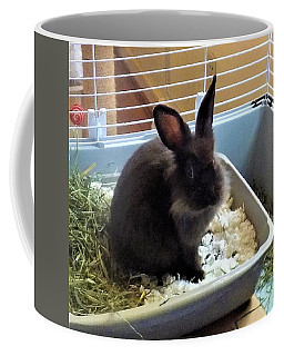 Coffee Mug featuring the photograph What? by Denise Fulmer