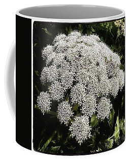 Coffee Mug featuring the photograph What Flower Is This? I Think It's by Mr Photojimsf