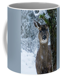 Coffee Mug featuring the photograph What Is This - 365-280 by Inge Riis McDonald