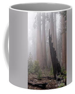 Coffee Mug featuring the photograph What Lurks In The Forest by Peggy Hughes