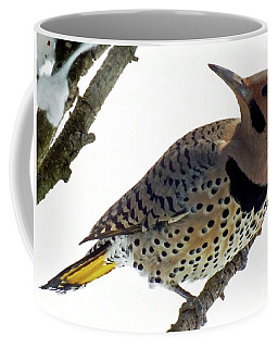 What Was That - Northern Flicker Coffee Mug