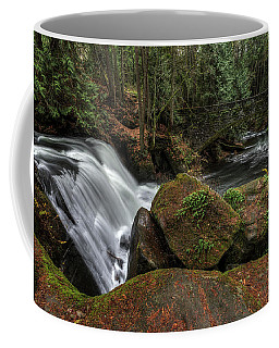 Whatcom Falls Coffee Mug